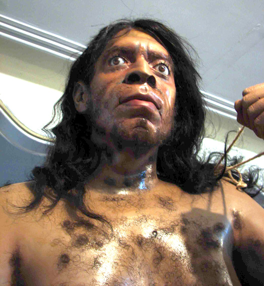 Neanderthals' large eyes may have hurt their chances